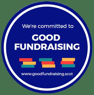 Good Fundraising Standards